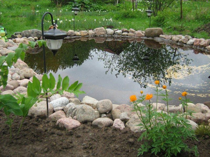Водные ресурсы водоема