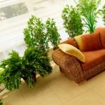 Как организовать зимний сад на балконе?