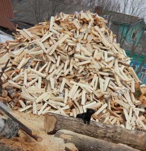 Лучшая пила для заготовки дров